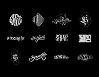 Type / Hand Lettering & Logos vol.2
