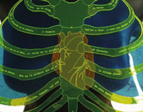 Pectoral protector de corazón