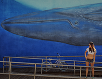 Whale and Indian