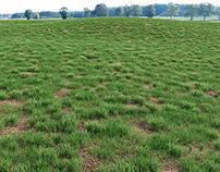 VIZPARK Real Grass Fields - MODO version