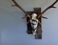 Bull Elk Skull Sculpture