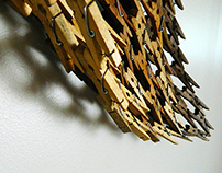 Miscellaneous clothespins works for 50