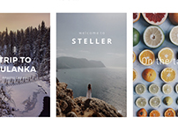 Steller App Case Study - Team Building