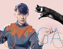 CF | 林宥嘉 The Great YOGA 演唱會DVD/BD預購