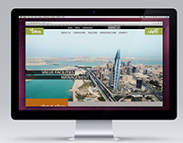 Olive VFM / Website Concept