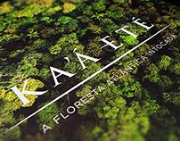 Kaaeté