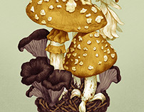 Mycology Postcards