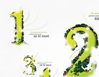 Evocasa Viva - Brochure Design
