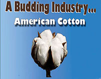 Concept advertisement for promoting the cotton industry