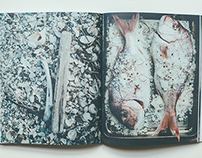 Jody Vassallo-beautiful food book.