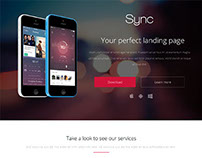Sync WordPress Theme
