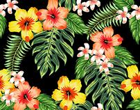 Traditional Aloha Patterns