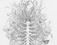 Drawings 2014 / Meditations
