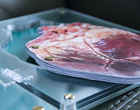 Coffee Table Book : Damien Hirst
