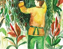 Jardinero / Gardener