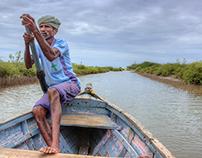 Pichavaram, Tamil Nadu, India