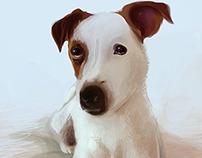 Realistic Drawing -dog