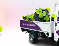 Pure Grapes