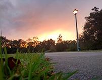 Foto Osprey park