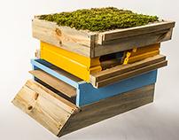 Educational Beehive