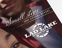 Lad Lake Identity and Marketing Materials