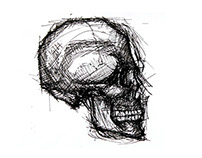 Anatomía/Anatomy