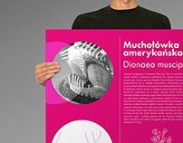 Infographical posters