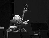 """Festival """"Les Vacances de Mr Haydn"""""""
