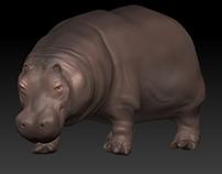 Hippopotamus Zbrush