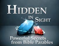 Hidden in Sight