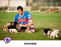 Charity project with Rugby Rovigo Delta team  for dogs