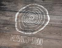 Identity + web Palosanto Studio