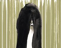 Ringu (1998) Poster Art