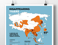 Disappearing Tigers