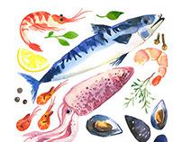 Watercolor set of sea food