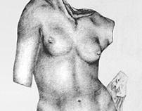 Venus - Crayon