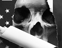 Shelf Heroes - American history X