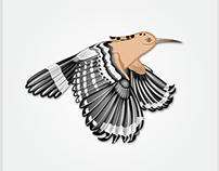 """My First Design in Behance: HudHud"""" The Cyclone Bird"""""""