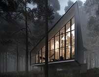 Arch Visualisation | House to catch the forest