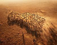 Land Rover: Herds (Mattepainting, 2014)