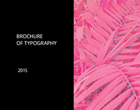 Brochure. The basic rules in typography