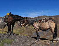 Sierra Nevada del Cocuy II