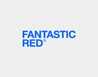 Фирменный стиль Red Agency
