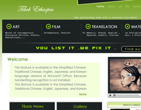 Tibeb Ethiopia Website