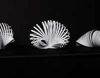 Ammonite Forms