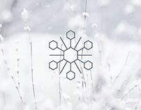 Stylised snowflake collection