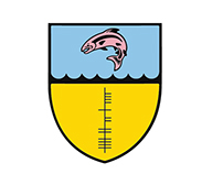 Hibernia College Branding