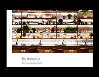 The Dorchester Hotel - Web Concept