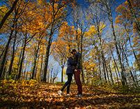 We Found Autumn