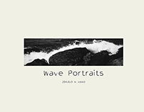 wave portraits in XIDAO